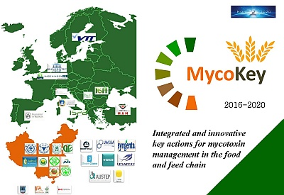 MycoKey leaflet for events Image
