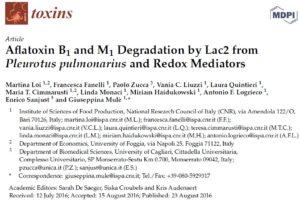 Aflatoxin B1 and M1 Degradation by Lac2 from Pleurotus pulmonarius and Redox Mediators Image