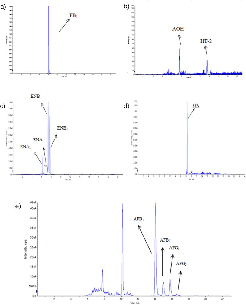 Assessment of allyl isothiocyanate as a fumigant to avoid mycotoxin production during corn storage Image