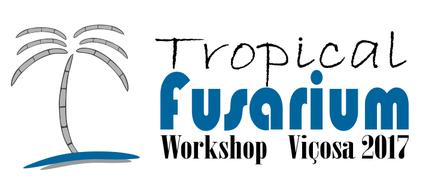 MycoKey presentation at the Tropical Fusarium Training Course, Vicosa, Brazil Image