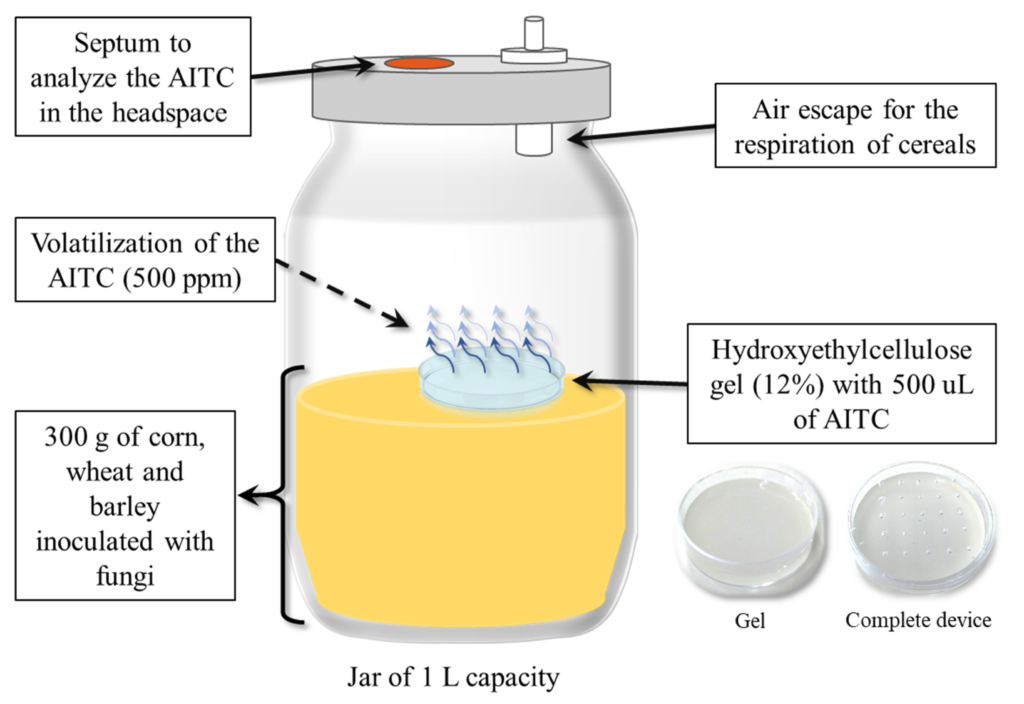 Development of an Antifungal and Antimycotoxigenic Device Containing Allyl Isothiocyanate for Silo Fumigation Image