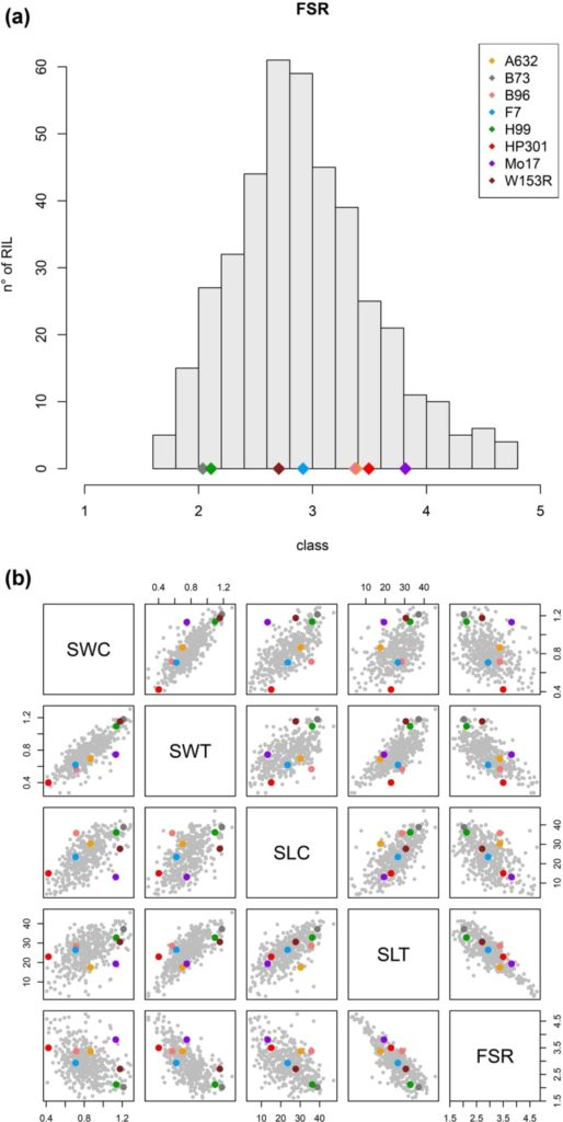 Unravelling the genetic basis of Fusarium seedling rot resistance in the MAGIC maize population: novel targets for breeding Image