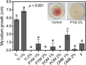 Control ofFusarium graminearumin wheat with mustard-based botanicals: Fromin vitrotoin planta Image