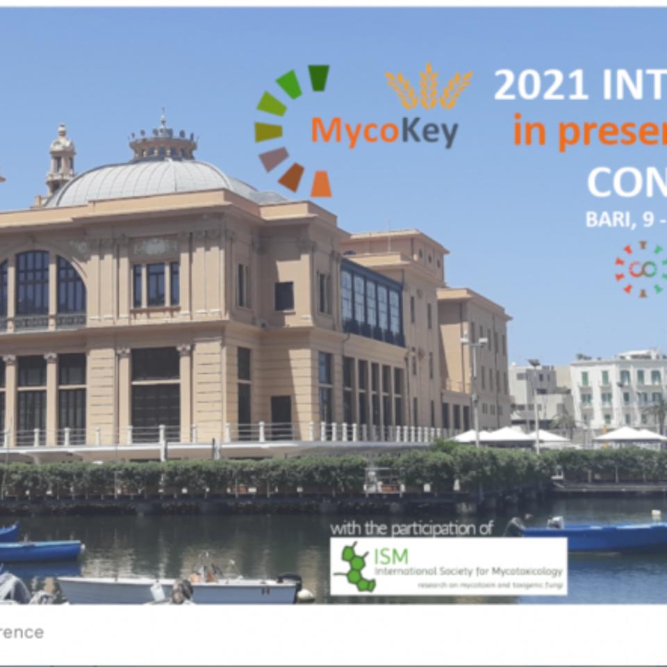 Mycotwins_MycoKey-2021-bari-1024×442-1